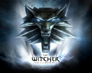 The Witcher: Rise of the White Wolf til PlayStation 3