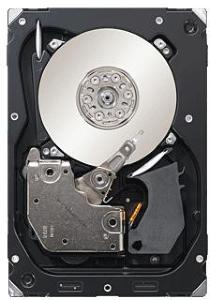 Seagate Cheetah 15K.7 300 GB SAS
