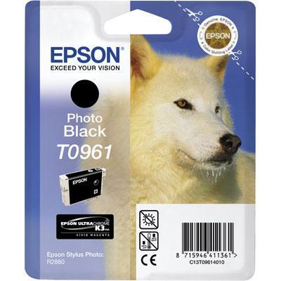 Epson T0961 Fotosort
