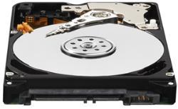Western Digital AV-25 500GB 16MB