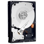 Western Digital RE4 250 GB