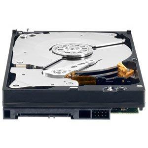 Western Digital RE4 250 GB