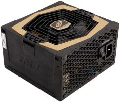FSP Group Aurum 600W