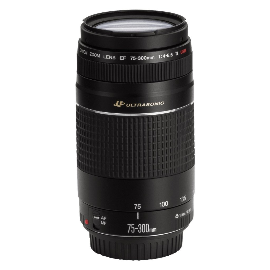 Canon Canon EF 75-300mm f/4-5.6 III USM
