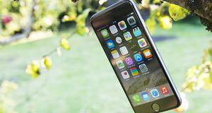 Test: Apple iPhone 6