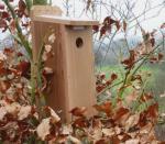 Fuglekasse for kamera for stær Ekstra kasse u/kamera