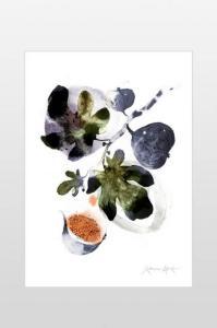 Ellos Poster Fiken 50x70 cm Unisex Blå/grønn