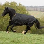 Overgangsdekken Bucas Irish Turnout Light/50 g 85 cm Black