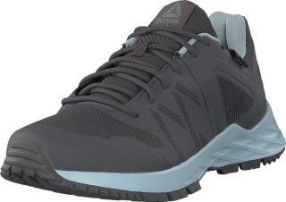 Reebok Rbk Astroride Trail Gtx Ash Grey/dreamy Blue, Sko, Sneakers og Treningssko, Løpesko, Grå, Dame, 41