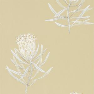 Sanderson Protea Flower - 216331