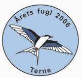Terne pin Årets fugl 2006