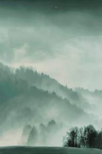 Malerifabrikken Poster Holy Land Unisex Grønn