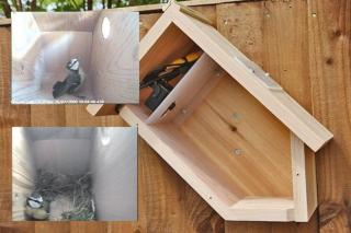 Fuglekasse kamera kit m/odd Box Farge HR kamerakit m/infrarød nattfunksjon
