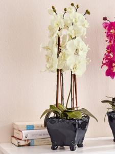 KLiNGEL Orkidé KLiNGEL hvit