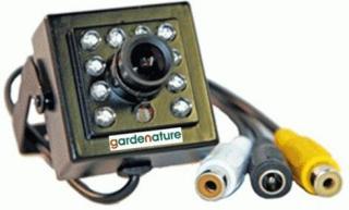 Ekstra kamera for fuglekasse Kamera uten kasse eller kabler