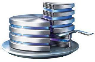 ACRONIS Disk Director Server (v. 12.5) - Technician License Subscription (1 år) - et ubegrenset antall maskiner (D2SAEBLOS71)