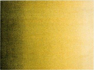 Dis Moss dørmatte 85x115 cm Heymat