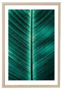 Bloomingville Poster Grønn med Ramme Natur