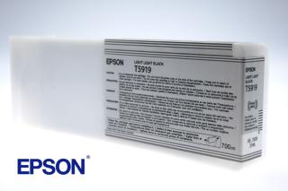 EPSON INK STYLUS 11880 LIGHT BLACK (C13T591900)